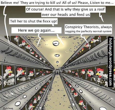 The chickens know too much