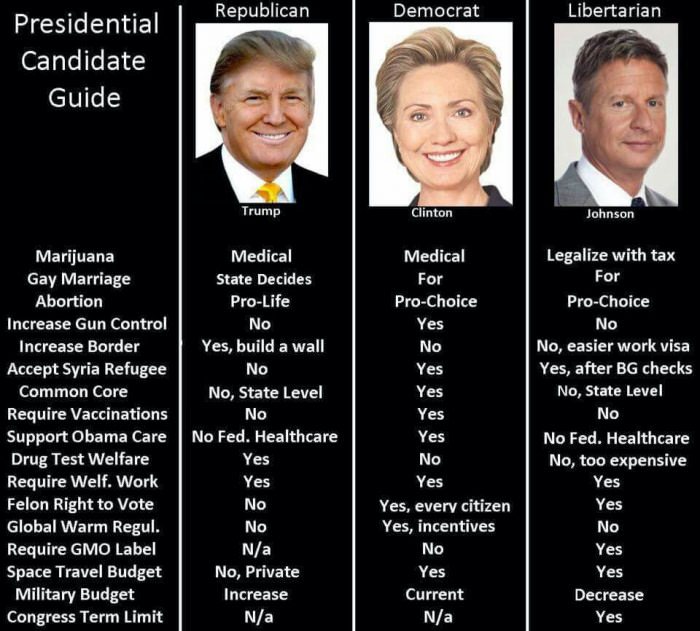 friendly-guide-to-us-presidential-candidate-issues